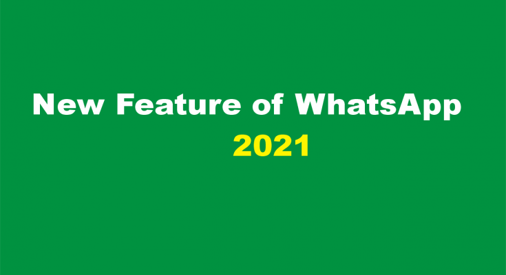 WhatsApp brings the best new feature for users in 2021